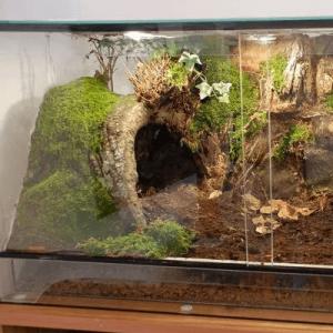 Habitats & Enclosures